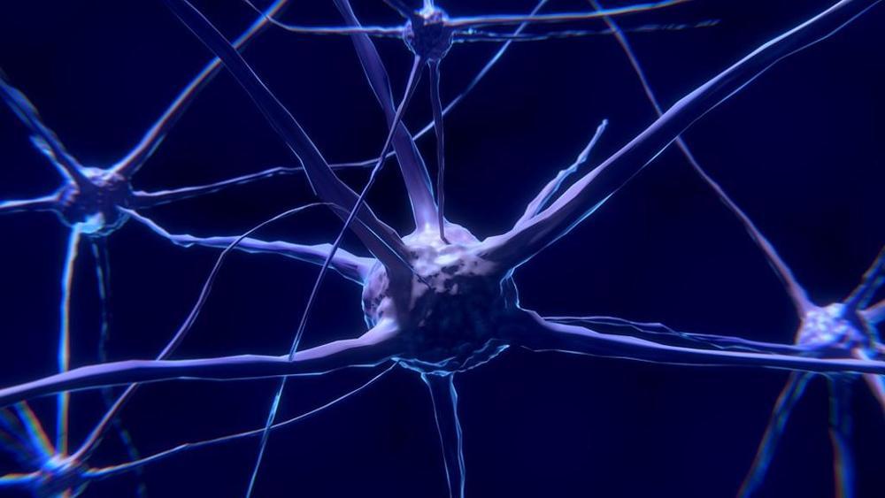 Ictus, aneurismi ed emorragie cerebrali: ecco cosa succede e come si interviene